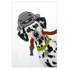 Dalmatian Firefighter