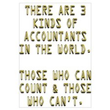3 Accountants
