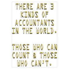 3 Accountants