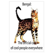 Cool people love bengals