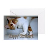Happy Birthday - Dropping in Kitty Greeting Card