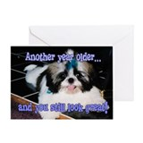 Birthday - Shih-Tzu Puppy Blue Bow Greeting Card
