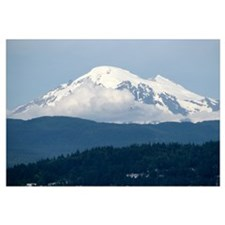 Mt. Baker View