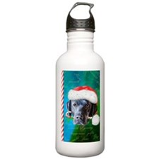 Black Lab Christmas Water Bottle