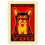 CAT - Big Brother Propaganda