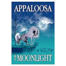 Appaloosa Horse by Moonlight
