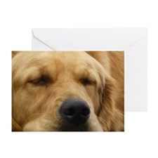 Golden Retriever sleeping Greeting Cards (Pk of 20