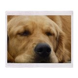 Golden Retriever sleeping Throw Blanket