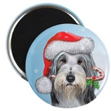 "Bearded collie 2.25"" Magnet (10 pack)"
