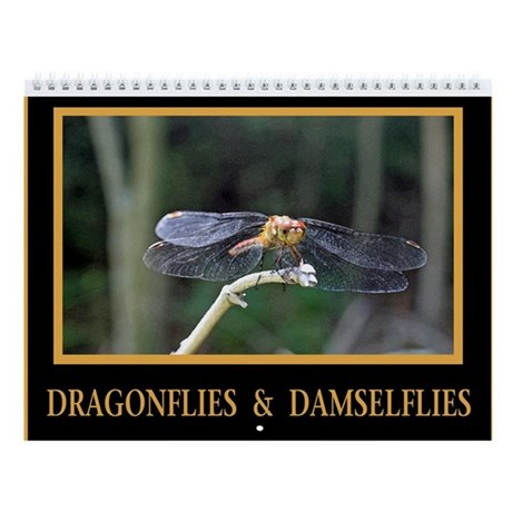 Dragonflies and Damselflies Wall Calendar