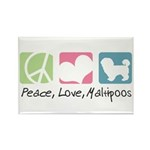 Peace, Love, Maltipoos Rectangle Magnet (100 pack)