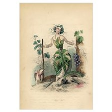 LADY OF THE VINE