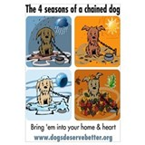 4 Seasons of Chained Dog