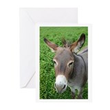 Mule Greeting Cards (Pk of 10)