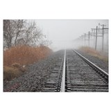Tracks in the Mist