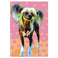 Seeing Spots Chinese Crested