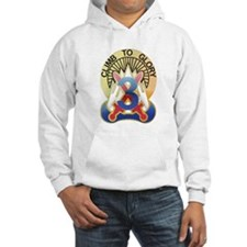 10th Mountain - 3RD Combat Br Hoodie
