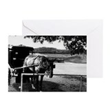 So Bored Greeting Cards (Pk of 10)