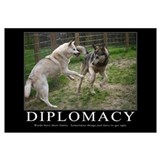 Diplomacy Demotivational (Large)