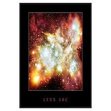 """Lynx Arc <br>(23"""" x 23"""")"""