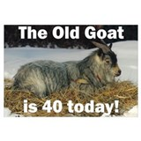 Old Goat is 40 Today