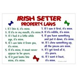 Irish Setter Property Laws 2