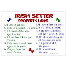 Irish Setter Property Laws 2