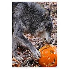 Nira's Halloween