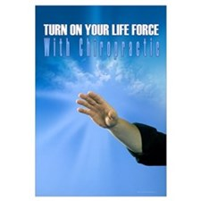 Chiropractic Life Force 23x35