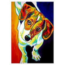 Beagle #4