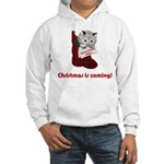 Hang In There Baby Hooded Sweatshirt