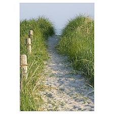 New England Coastal Dune Path