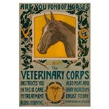 VETERINARY CORPS 16x20