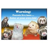 Warning ferrets live here #2