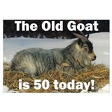 Old Goat is 50 Today