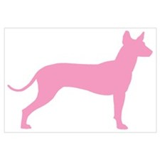 Xolo Dog Pink Profile