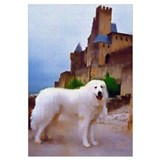 "Great Pyrenees ""Carcassonne"""
