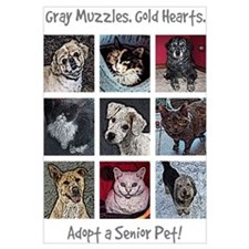 Cute Shelter animals Wall Art