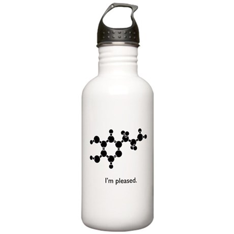 Dopamine is Pleased Stainless Water Bottle 1.0L