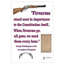 Firearms and the Constitution