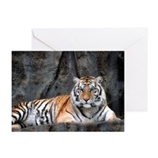 Resting Tiger Greeting Cards (Pk of 10)
