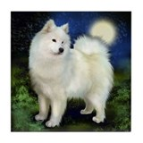 SAMOYED DOG Full Moon Tile Coaster