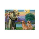 St Francis - 2 Goldens Rectangle Magnet