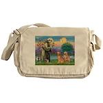 St Francis - 2 Goldens Messenger Bag