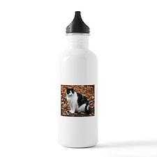 Tuxedo Kitty Water Bottle