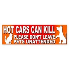 Hot Cars KILL Pets! - Bumper Bumper Sticker