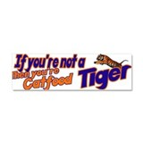 Tiger Bait Car Magnet 10 x 3