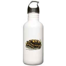Yellow-Footed Tortoise Water Bottle