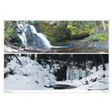 Summer/Winter Grotto Falls