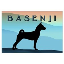 Blue Mountains Basenji